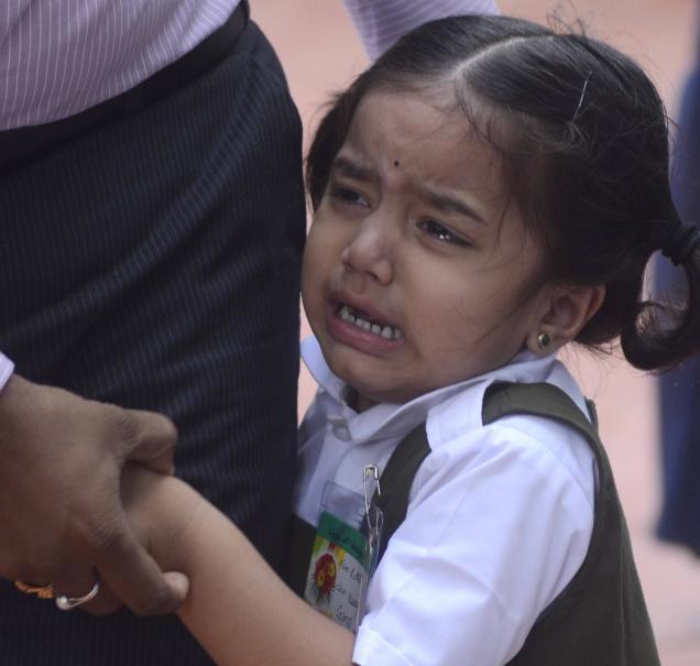 Image from pamkanaly.com